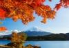 Du lịch Nhật Bản 4 ngày mùa thu